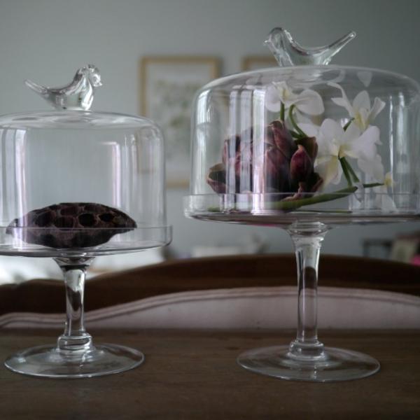 Тортовница Glass Bird-3986