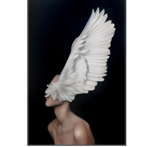 Картина в раме Bird - Girl 5-0